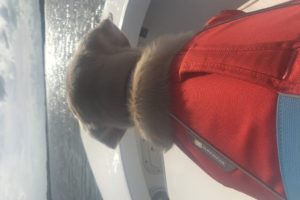 CANINE-REVIEW-NELLIE-SEA-ISLAND-FISHING-LIFE-JACKET