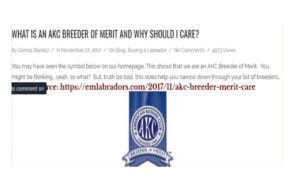 "Screenshot, Endless Mountain Labrador Blog Post: ""What is an AKC Breeder of Merit and Why Should I Care?"""