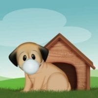 canine-review-dog-coronavirus-mask