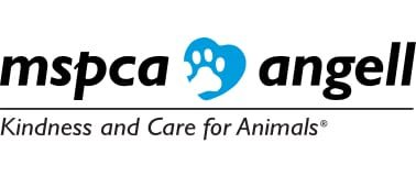 mspca angell animal medical center