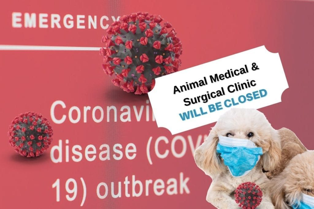 covid-hospital-closed-veterinarian
