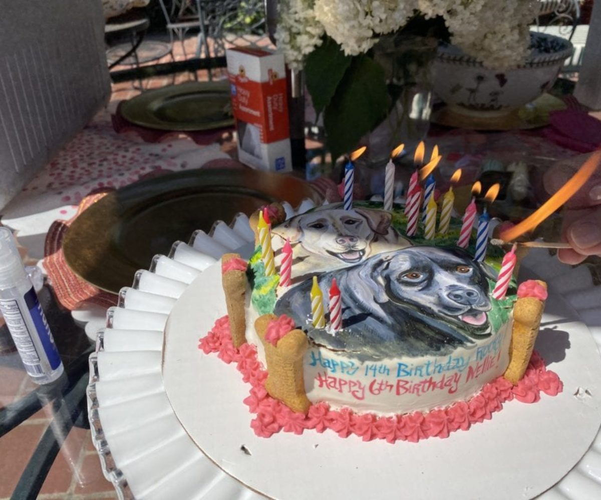 dog birthday party july 2020 cake candles