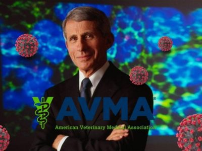 Dr. Anthony Fauci, photo credit: NIAID