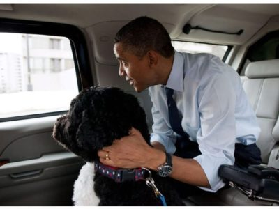 Bo and President Obama christmas shopping