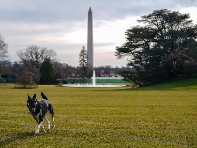 Major arrives at the White House - Official White House Photos