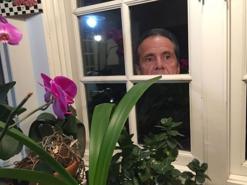 peeping cuomo in our window
