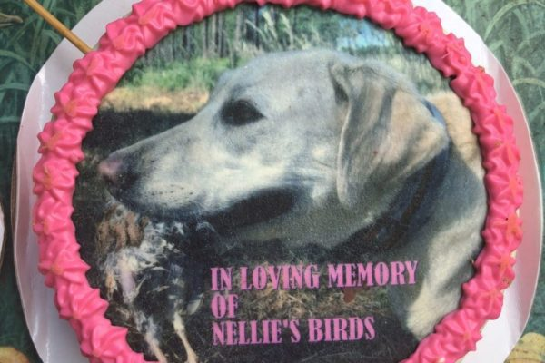 nellie-party-2021-07